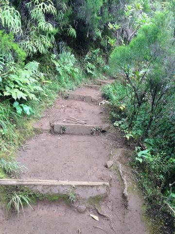 2015-08-03 - 02 - GR2 - Brulé à Roche Ecrite - Mafate Trek Tour - La Réunion (16)